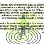 Web oficial Lydia Martin LGM- Crecimiento personal y el ego